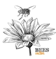 Flying honey bee and blossoming flower vector