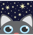 Grey cat looking up in night star sky vector