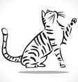 Cat 2 vector