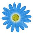 A blue flower vector