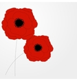 Red poppies flower background vector
