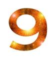 Number of orange firework nine vector