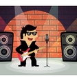 Rock star on stage vector
