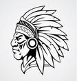 Indian head mascot vector