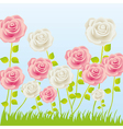 Roses in grass on blue background vector