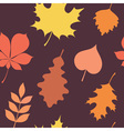 Autumn leaves silhouettes seamless pattern vector