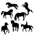 Wilde horse silhouettes set vector