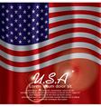Usa flag curtain vector