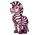 Zebra in cartoon style vector