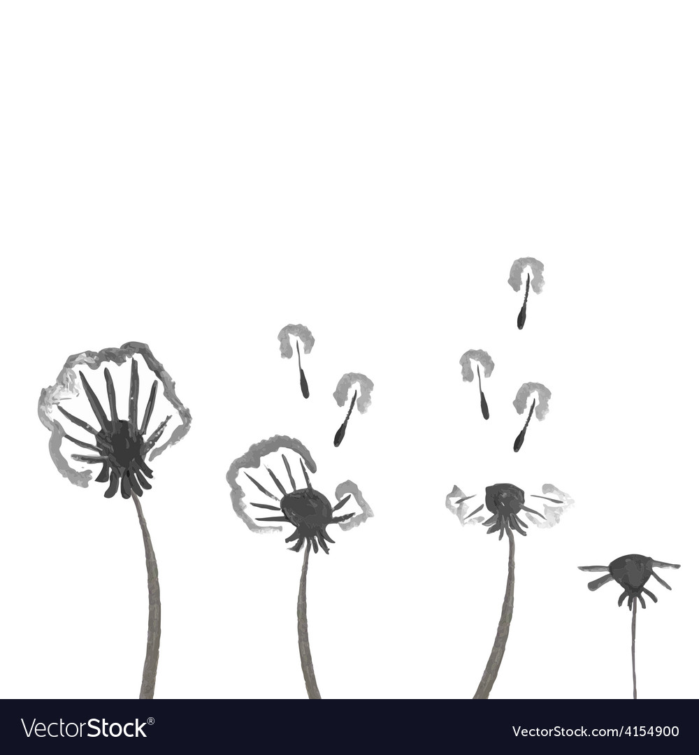 Watercolor dandelions abstract flower background vector | Price: 1 Credit (USD $1)