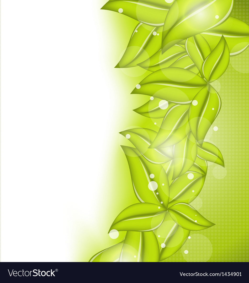 Nature background with eco green leaves vector | Price: 1 Credit (USD $1)
