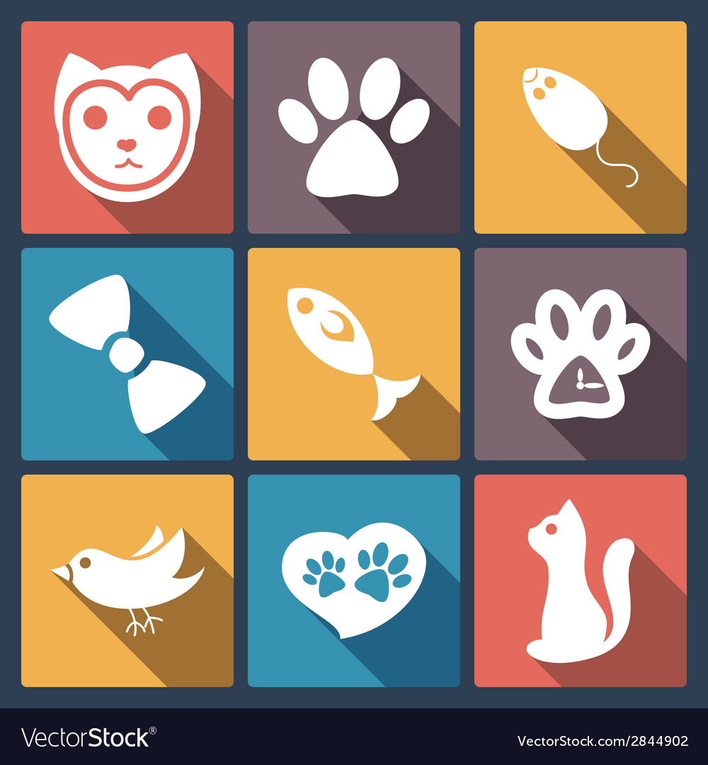 Flat cat icons set pet application icon in flat vector | Price: 1 Credit (USD $1)