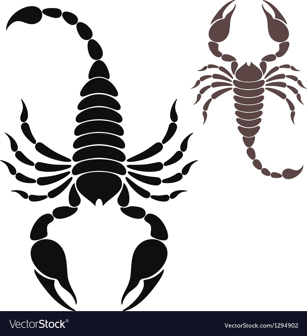 Scorpion vector | Price: 1 Credit (USD $1)