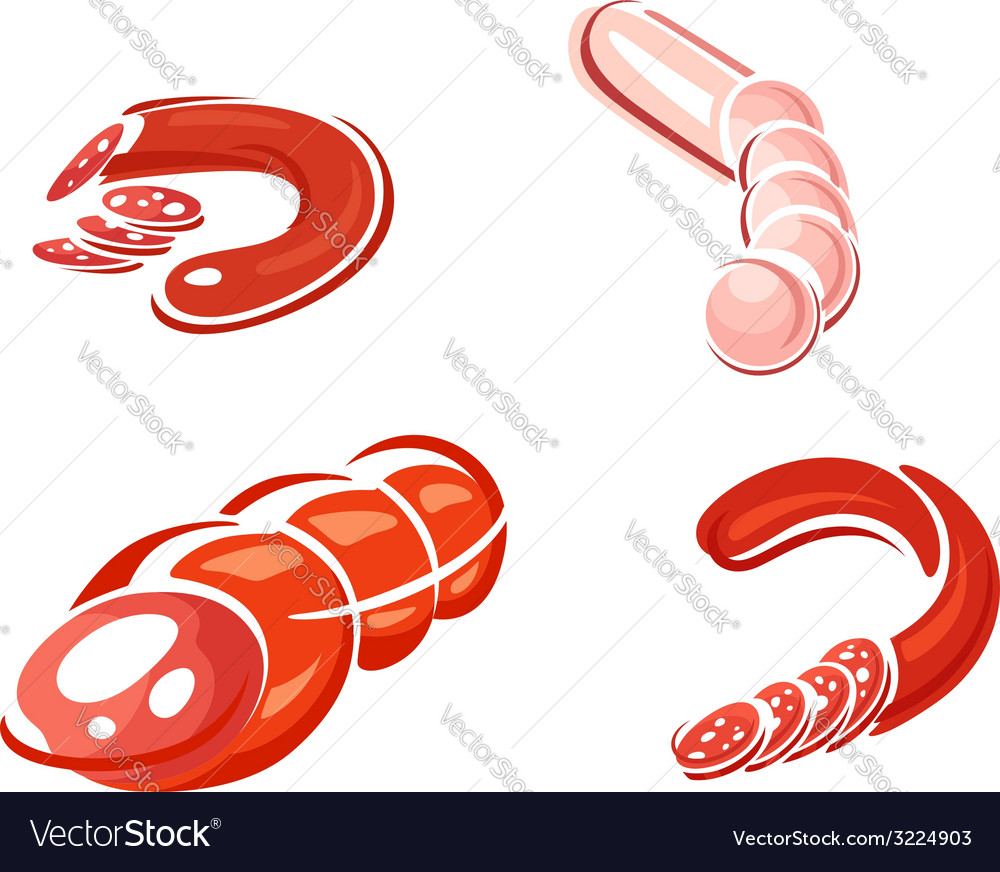 Spicy sausage and salami food vector | Price: 1 Credit (USD $1)