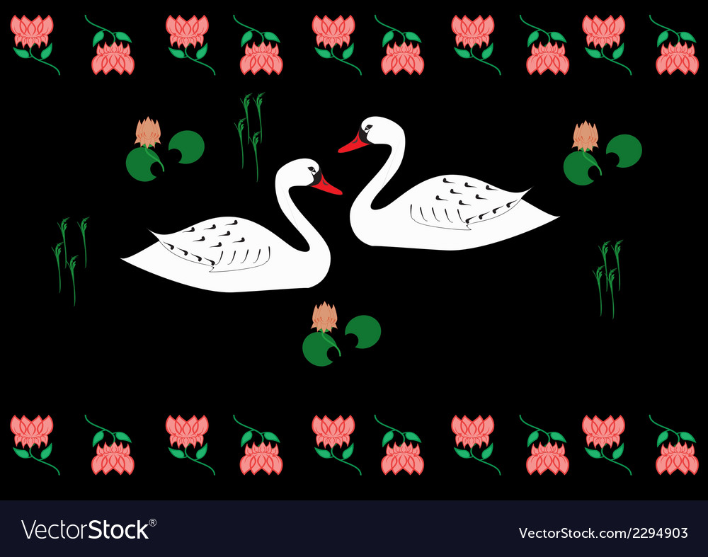 Swans vector | Price: 1 Credit (USD $1)