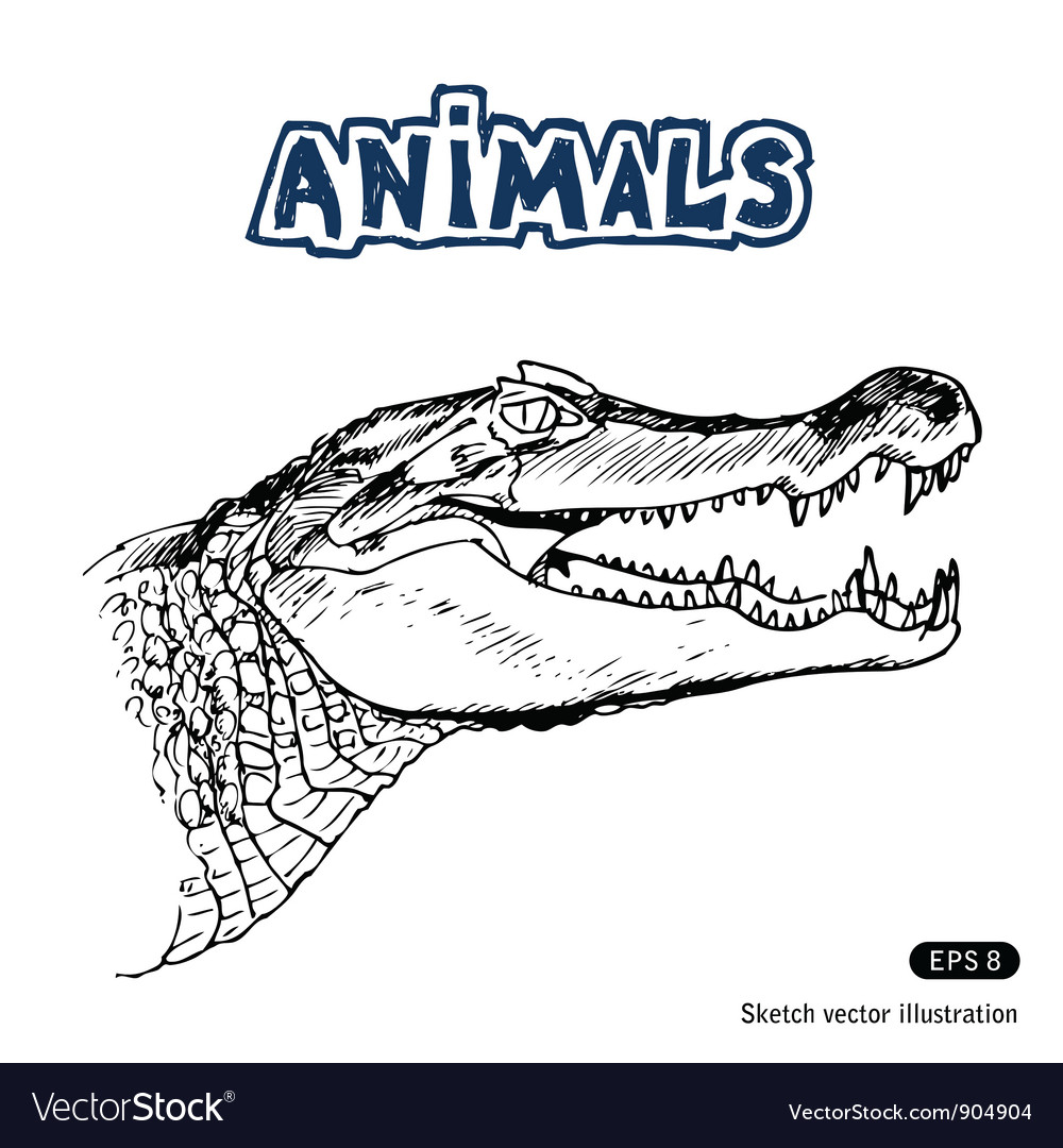 Alligator vector | Price: 1 Credit (USD $1)