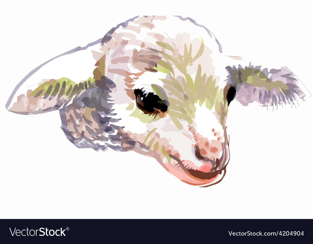Artistic lamb cartoon vector | Price: 1 Credit (USD $1)
