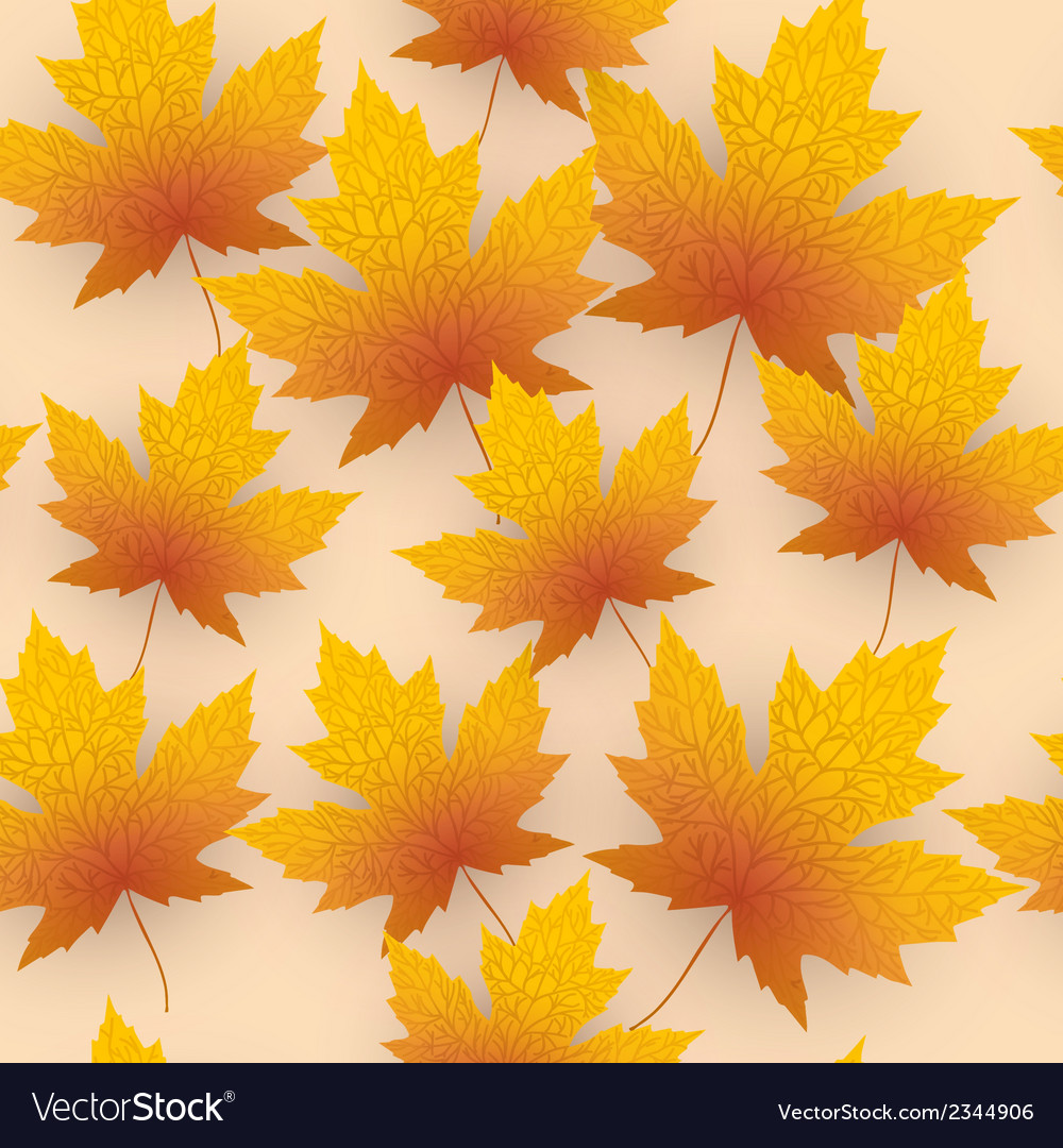 Maple leave fall background vector | Price: 1 Credit (USD $1)