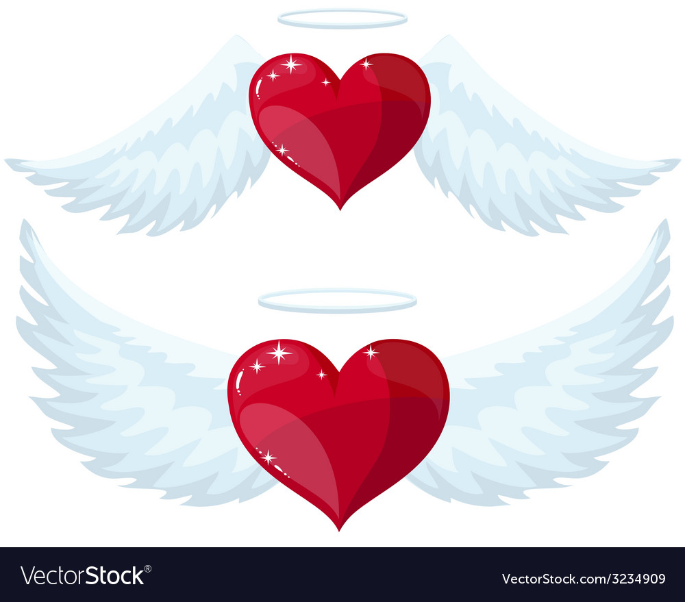 Angel heart with wings vector | Price: 1 Credit (USD $1)
