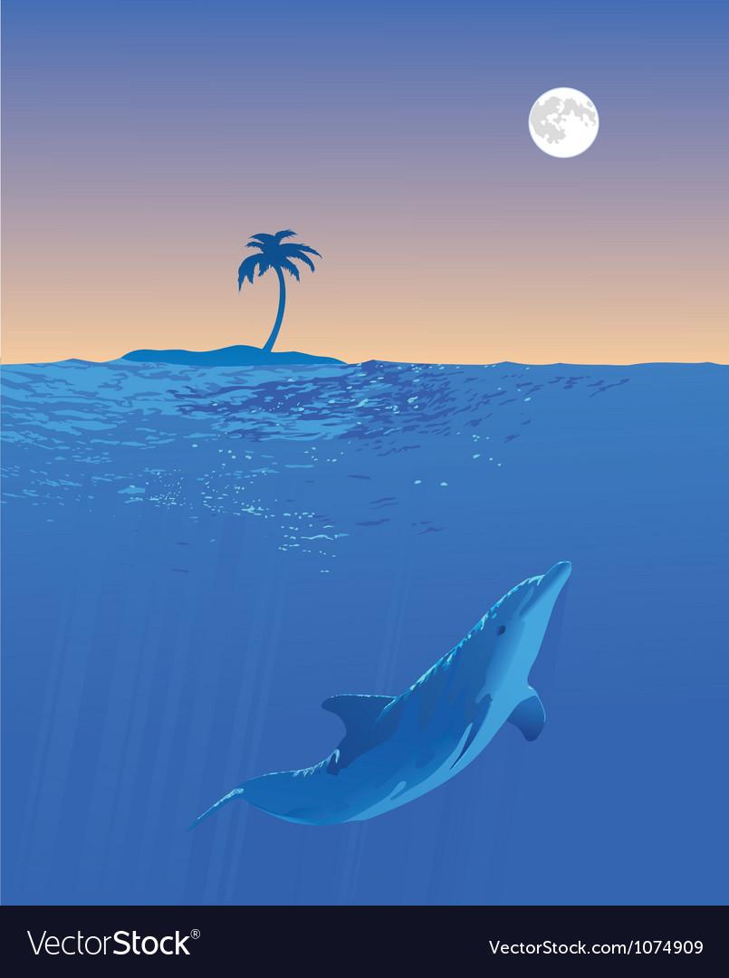 Dolphin moon swim vector | Price: 1 Credit (USD $1)