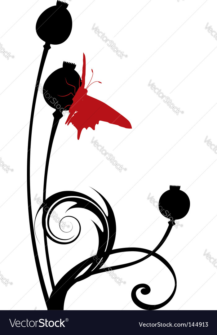 Poppy seed heads vector | Price: 1 Credit (USD $1)