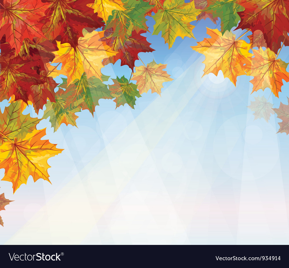 Autumnal leaves on blue sky background vector | Price: 1 Credit (USD $1)