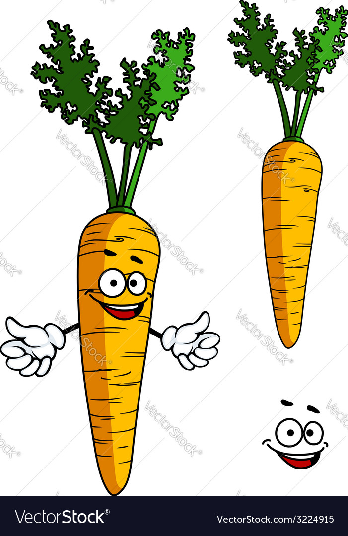 Happy cartoon carrot character vector | Price: 1 Credit (USD $1)