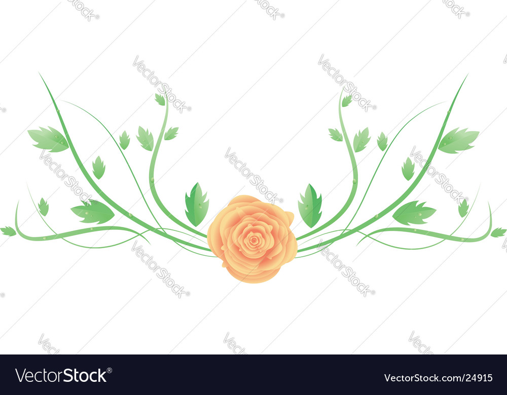 Rose with swirl leaves vector | Price: 1 Credit (USD $1)