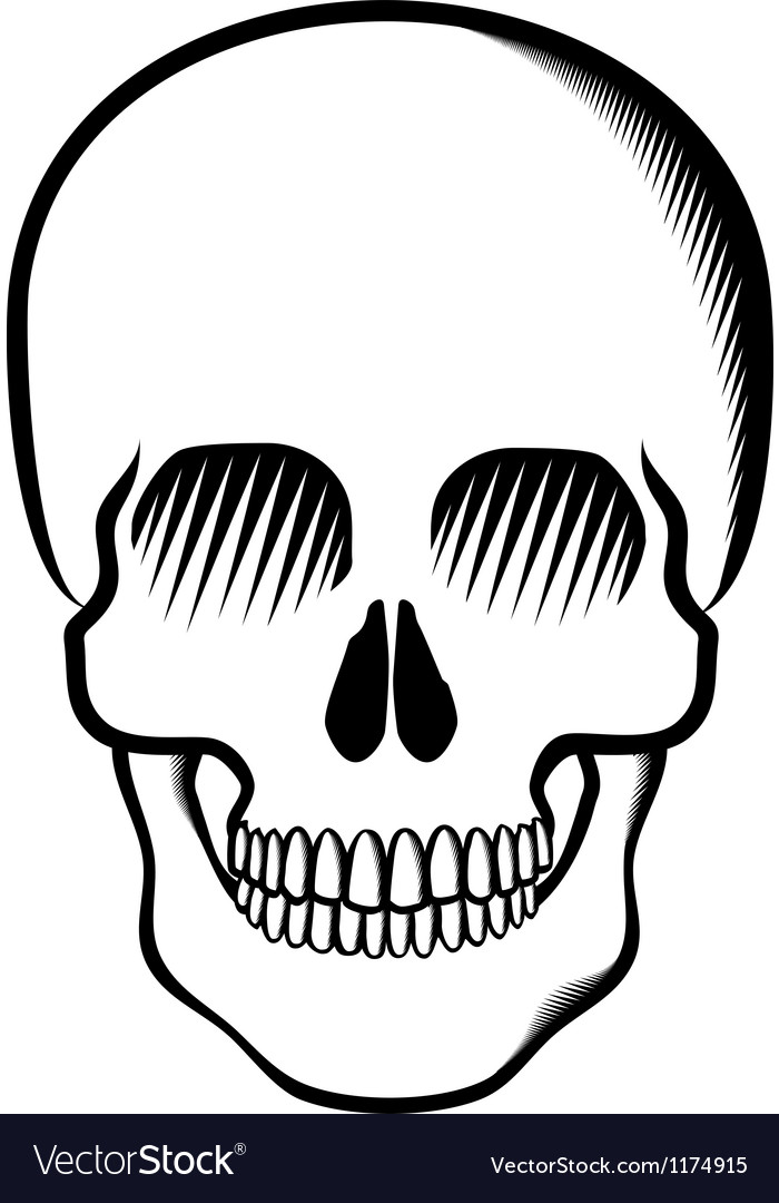 Skull black on transparent vector | Price: 1 Credit (USD $1)