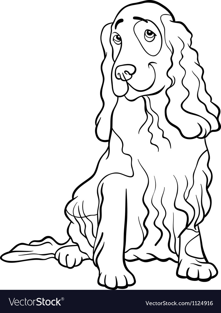 Cocker spaniel dog cartoon for coloring book vector | Price: 1 Credit (USD $1)