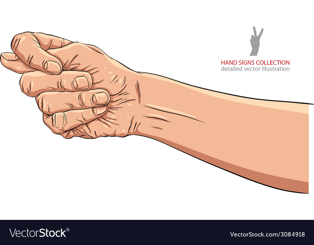 Fig fico hand sign detailed vector | Price: 1 Credit (USD $1)