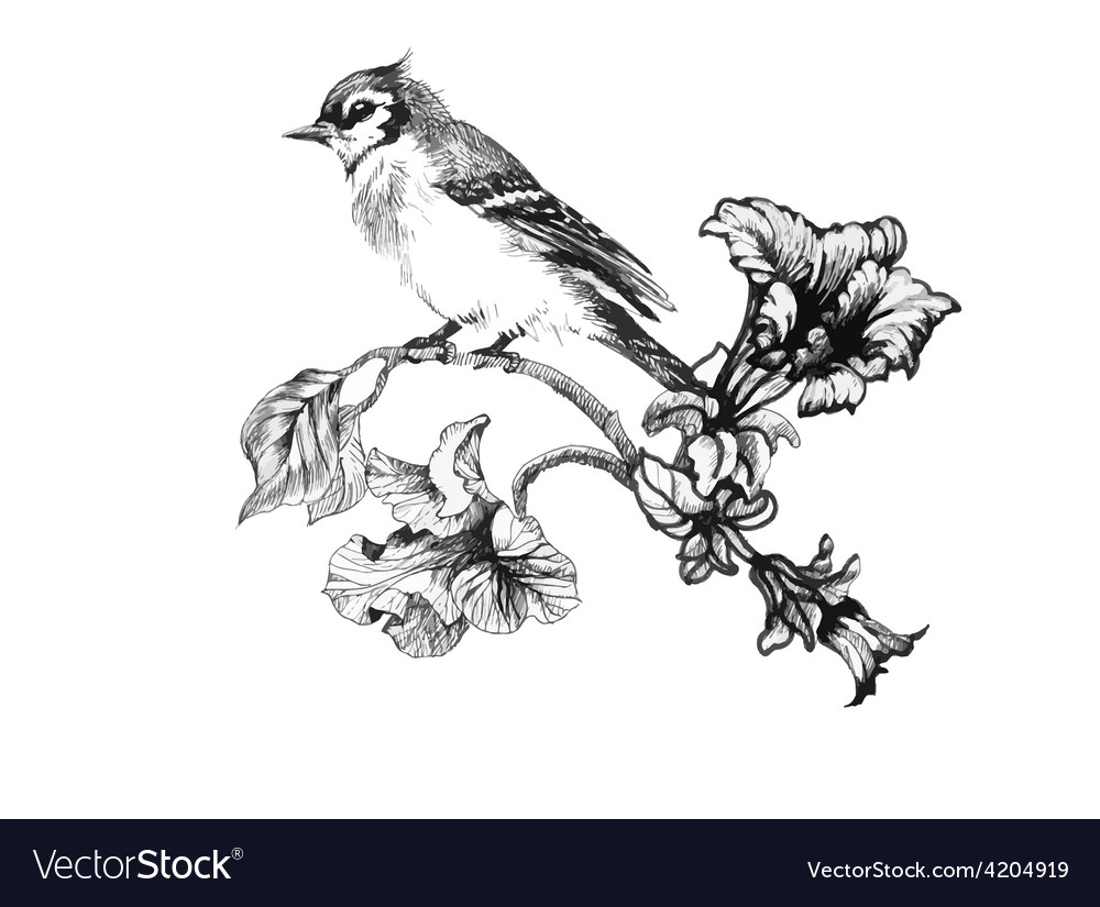 Artistic bird design vector | Price: 1 Credit (USD $1)