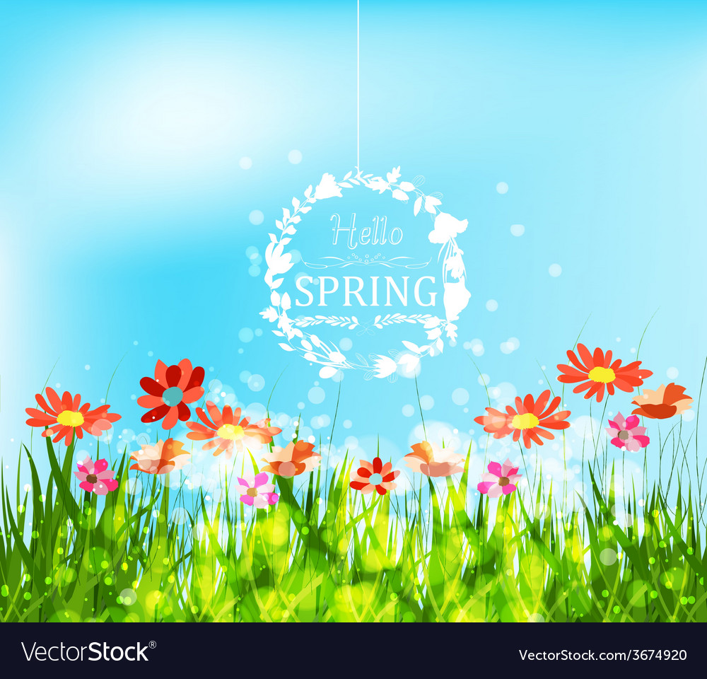 Hello spring background with sunflowers greeting vector