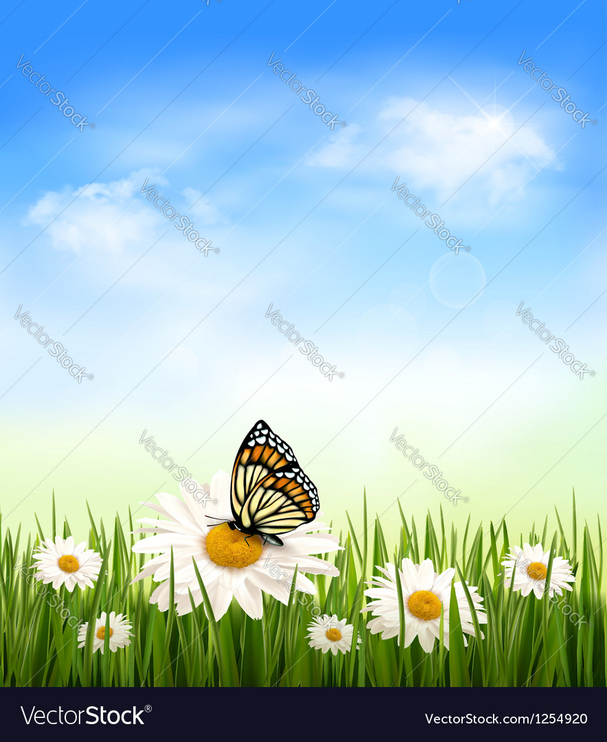 Nature background with grass and butterfly vector | Price: 3 Credit (USD $3)