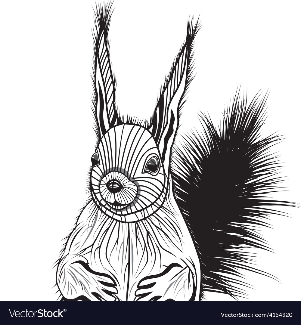 Squirrel head animal for t-shi vector | Price: 1 Credit (USD $1)