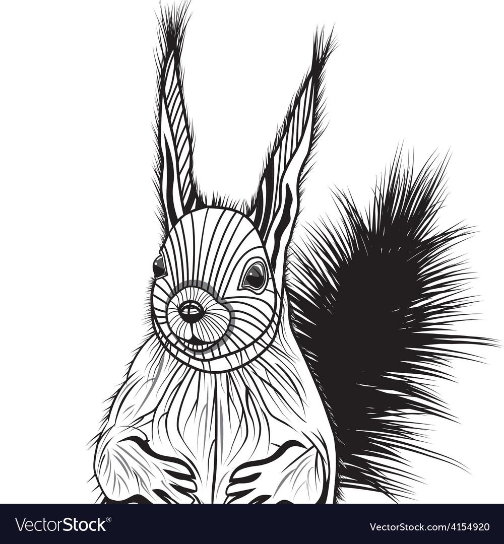 Squirrel head animal for t-shi vector