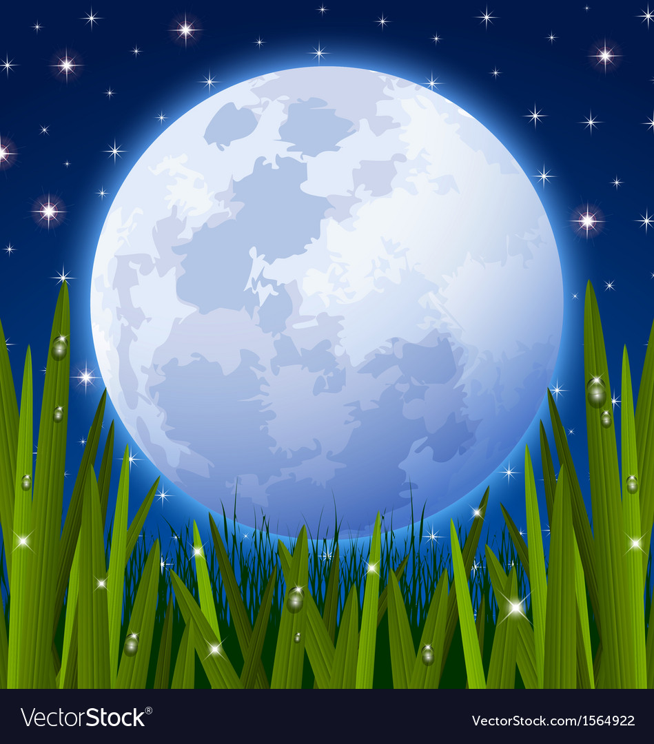 Full moon and grass meadow vector | Price: 1 Credit (USD $1)