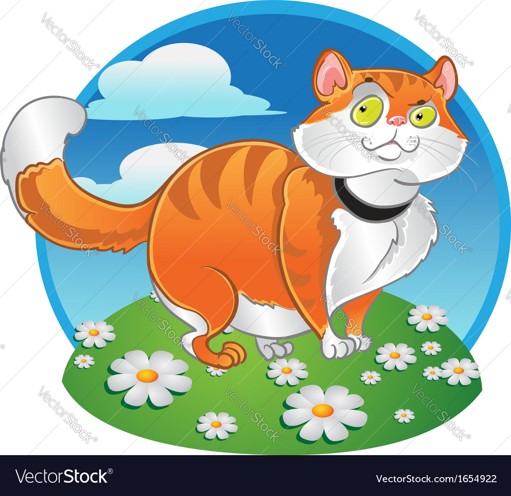 Orange fat cat on the color background vector | Price: 3 Credit (USD $3)