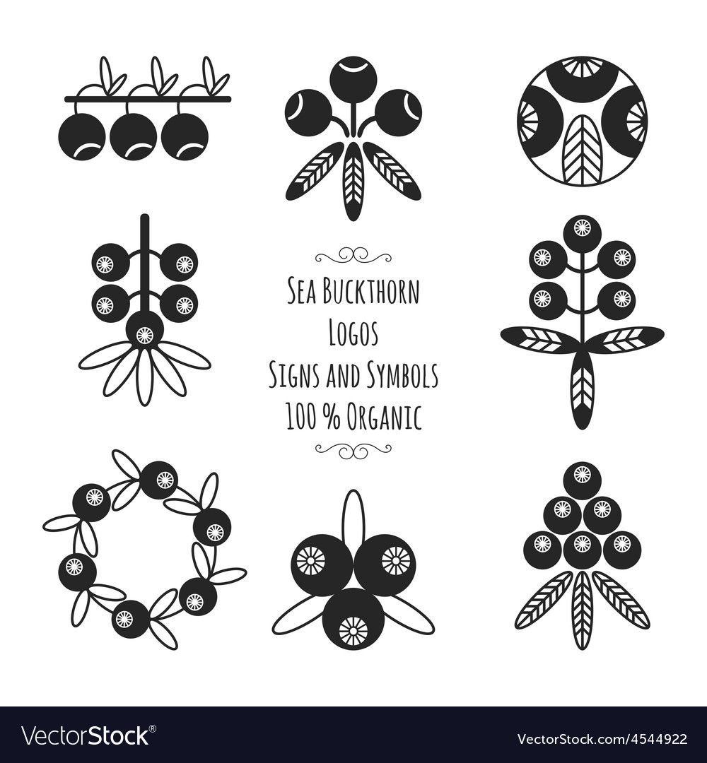 Set of the sea buckthorn logos signs and symbols vector | Price: 1 Credit (USD $1)