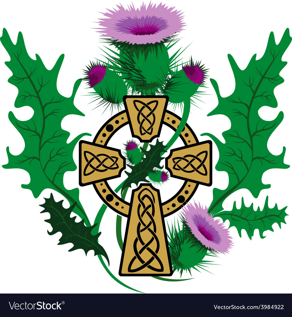 Stylized celtic cross framed thistle flowers vector | Price: 1 Credit (USD $1)