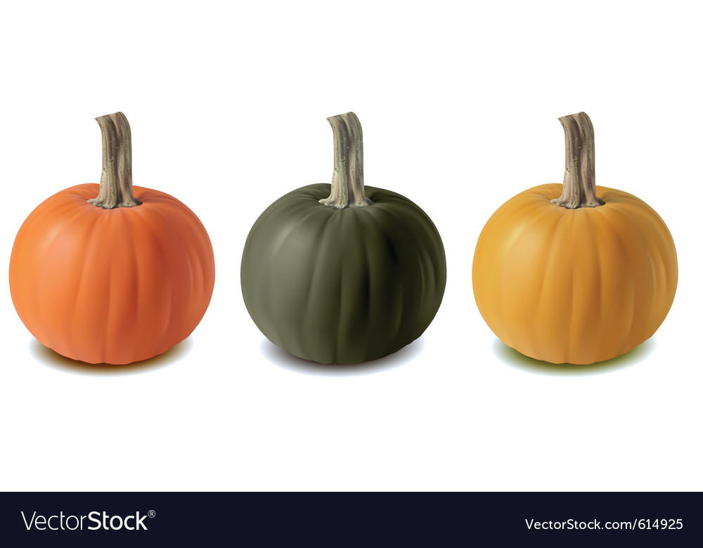 Pumkin three color vector | Price: 1 Credit (USD $1)