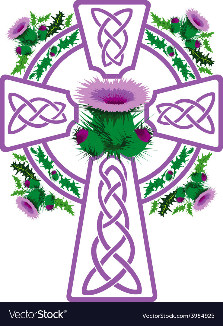 Stylized pink celtic cross framed thistle flowers vector | Price: 1 Credit (USD $1)