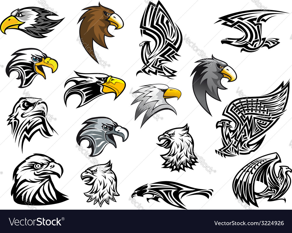 Cartoon eagle falcon and hawk heads vector | Price: 1 Credit (USD $1)