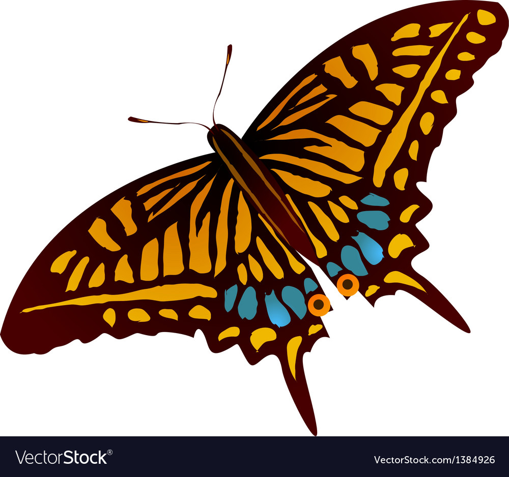 Icon butterfly vector | Price: 1 Credit (USD $1)