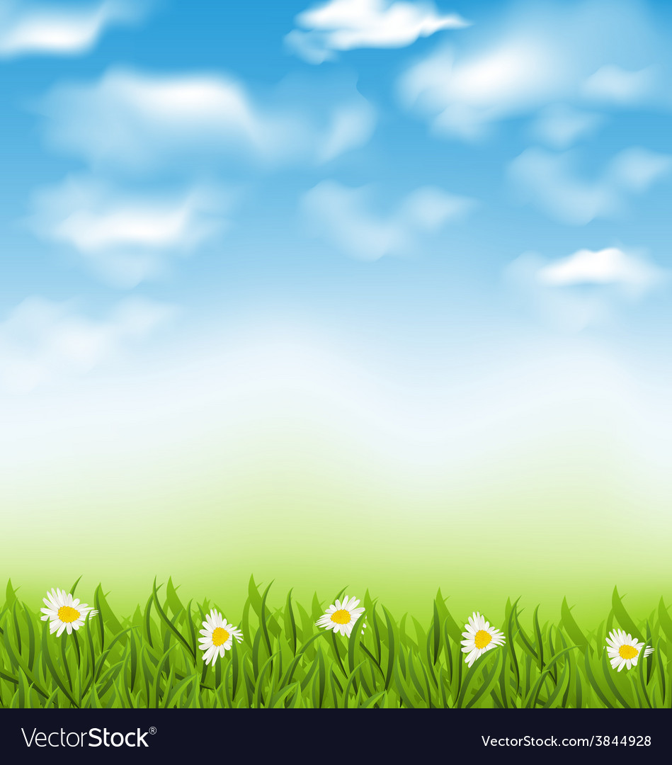 Spring natural background with blue sky clouds vector | Price: 1 Credit (USD $1)