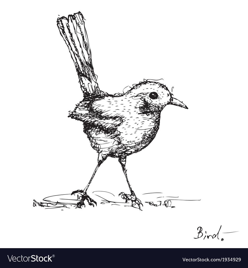 Sketch drawing of bird vector | Price: 1 Credit (USD $1)