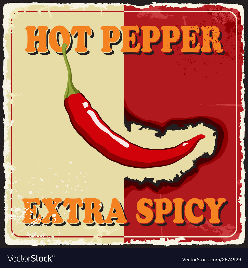 Vintage extra spicy poster chili pepper vector | Price: 1 Credit (USD $1)