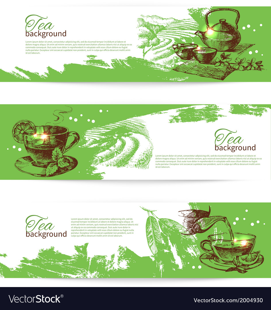 Set of tea vintage banners hand drawn sketch vector | Price: 1 Credit (USD $1)