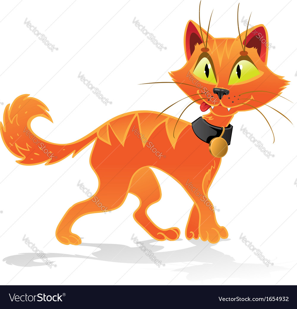 Pumpkin-orange halloween cat vector | Price: 1 Credit (USD $1)