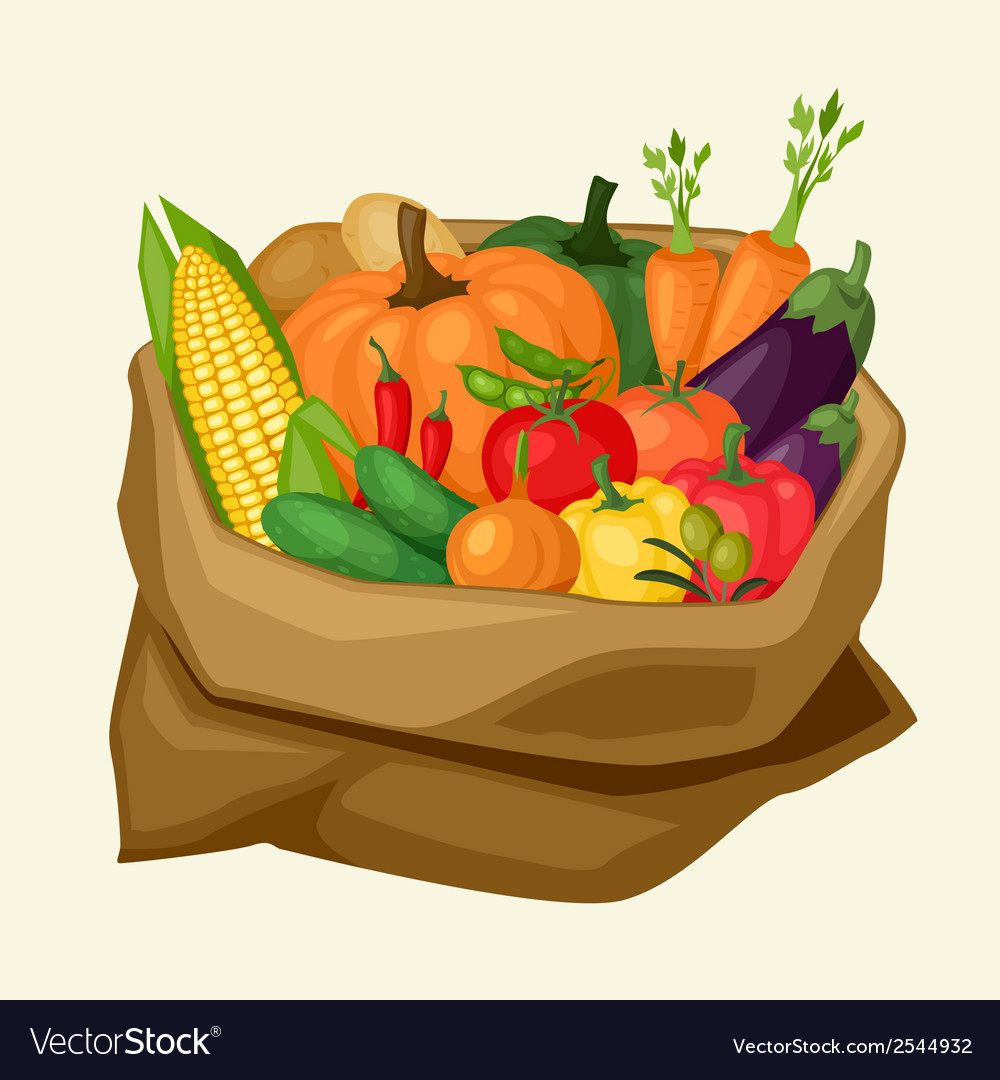Stylized sack with fresh ripe vegetables vector | Price: 1 Credit (USD $1)